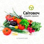 Органічні овочі «Світовоч» — смакуйте справжнє!