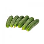 Замовити Корнішон +38 066 228-43-57. Доставка по Україні. Органічні овочі від ТМ Світовоч.
